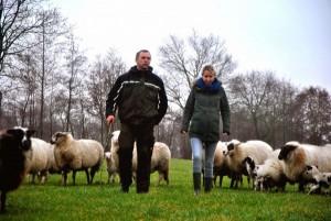 Martin Reitsma krijgt begrazingsproject in Heerenveen