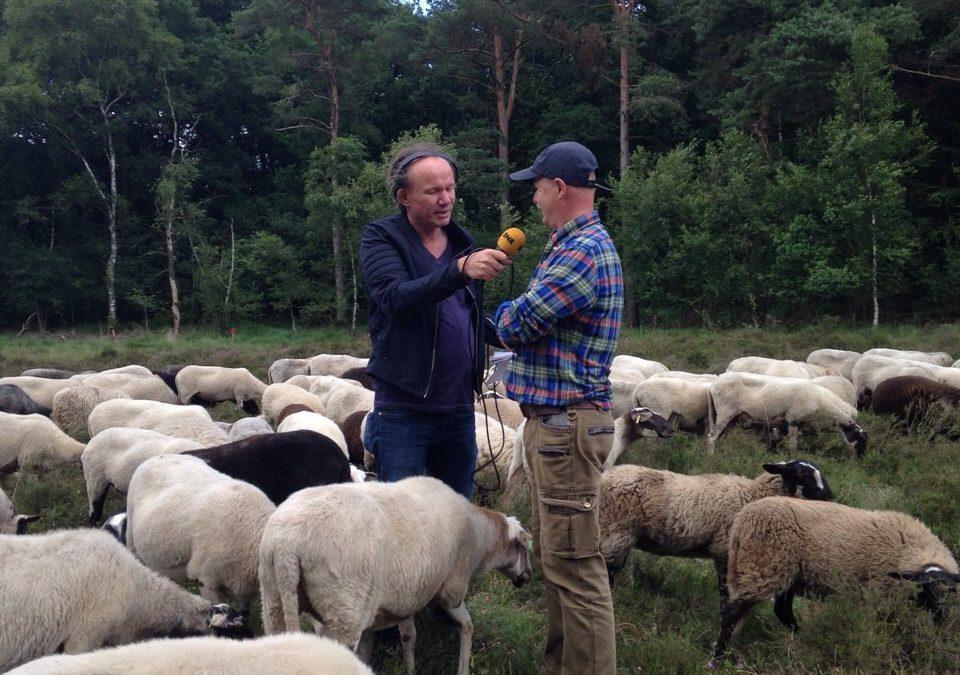 BNR Radio interviewt Henry over het terugdringen van teken