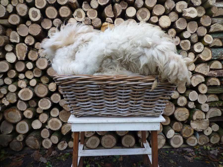 Viltvachten en Ruwe schapenwol te koop