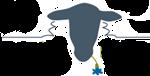 Logo-Natuurlijk-Beheer-wie-zijn-wij